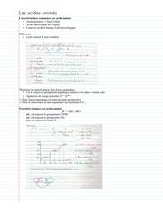 biochimie   resume proteine