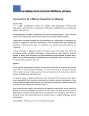 Fichier PDF investissement de 12