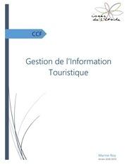 dossier ccf git 1
