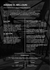 cv assaad el mellouki 2019 pdf f2
