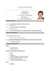curriculum vitae v2