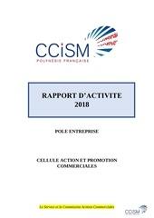 Fichier PDF rapport dactivite 2018