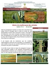 Fichier PDF 15 19bulletin  n15 rouille jaune  3eme avis converti 1