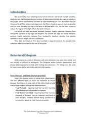 TSI Sloth Observation Guide.pdf - page 4/14