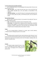 TSI Sloth Observation Guide.pdf - page 5/14
