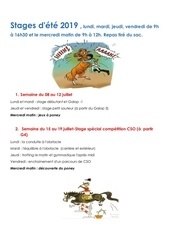 Fichier PDF stages ete 2019