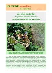 scolie des jardins montalivet carnets nat d raymond 2019