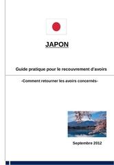 japan practical guide for asset recovery french