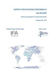 rapport et etude des pratiques professionnelles elodie deleegher