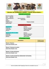 dossier de candidature  master essect v4
