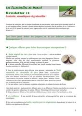 newsletter 1 les essentielles de muriel