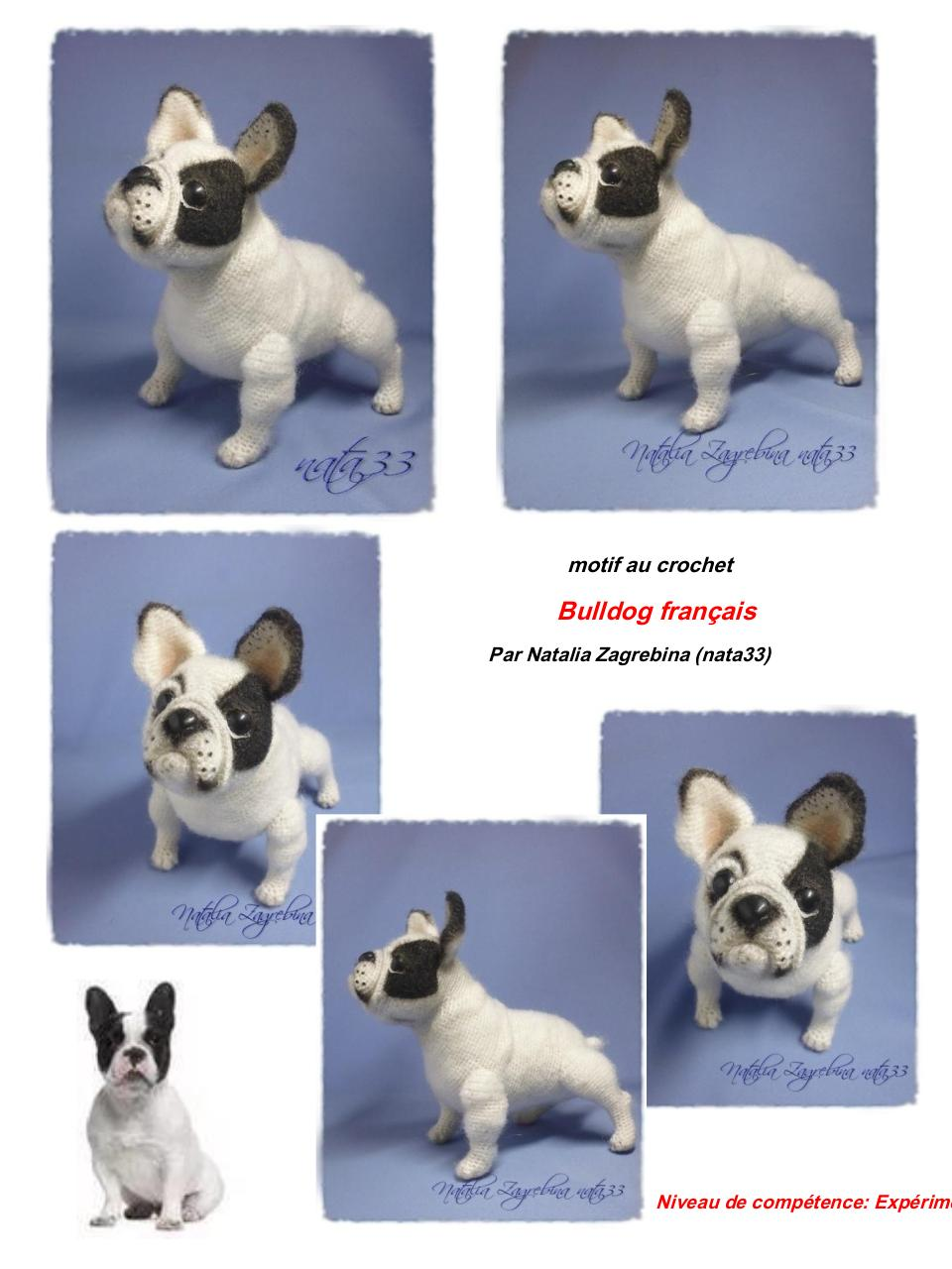 Aperçu du document frenchbulldog.en.fr(1).pdf - page 1/21