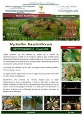 04 19note technique xylella fastidiosa 2019 converti 1