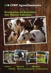 evaluation bien etre vaches laitieres