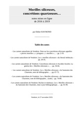 morilles siliceuses notes 2016  2019 didier raymond