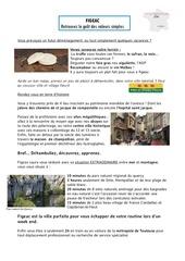 histoire figeac2