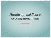 pdf handicap medical
