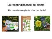 la reconnaissance de plante1