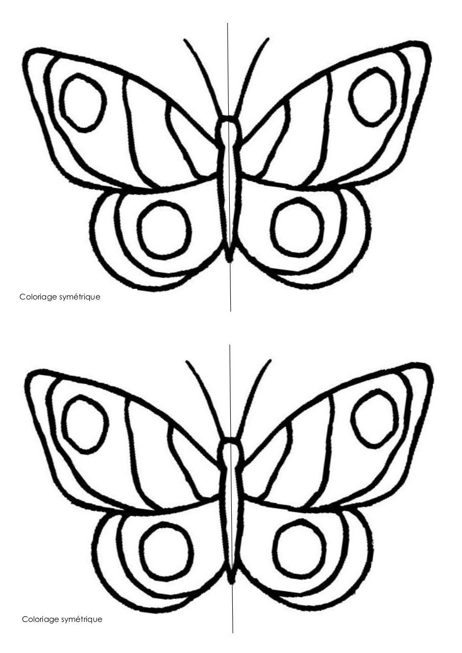 coloriage papillon par pasca - Fichier PDF