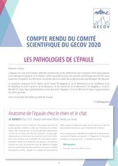 afvacarticle compte rendu cs gecov 2020 v2