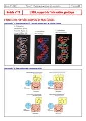 eleve module n13  ladn support de linformation genetique