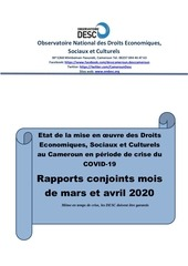 rapport desc covidfinal
