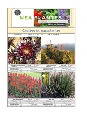 book plantes vivaces et terrain sec v6