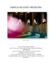 norig  no gypsy orchestrabio 2020