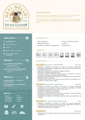 victor pluchon   graphiste   cv