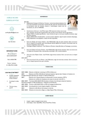 curriculum vitae 2020