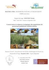 rapport m2 pnbnicolas bastide