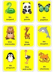 cartes jeu devinette animaux