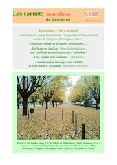 flore urbaine perigueux additions carnets d raymond 2020