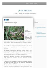 page grenouille agile