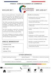 fzcc flyer 2020