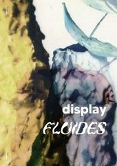 displaynumero2 fluides