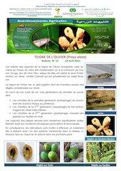 12 21 teigne olivier