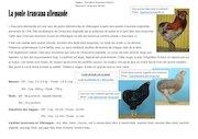 araucana allemande