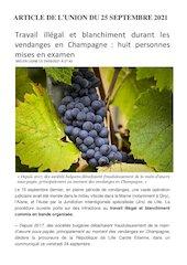 travail illegal et blanchiment durant les vendanges en champagne
